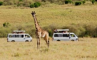 great Uganda adventure