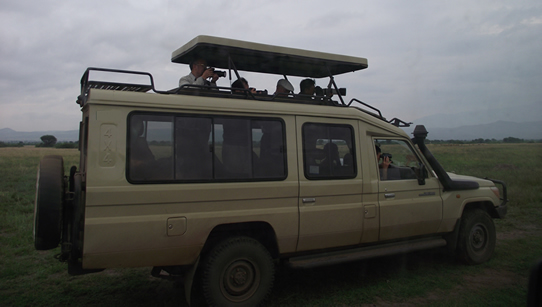 safari-land-cruiser