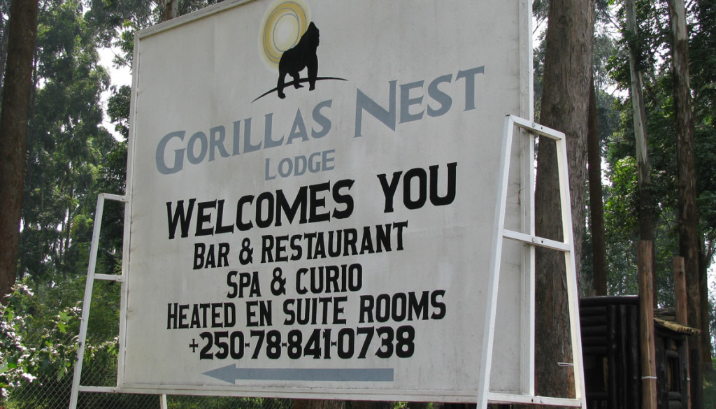 gorilla-nest-lodge