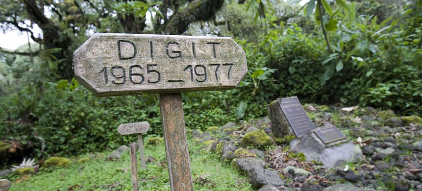 Digit and Dian Fossey Tombs near Karisoke Research Center