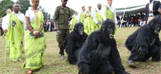 2018 Gorilla Naming Ceremony in Rwanda