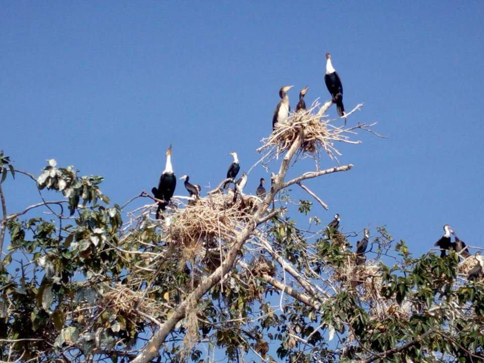 Uganda's Magical Islands